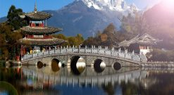 Dịch Vụ Gửi Hàng đi Nhật Bản Giá Rẻ